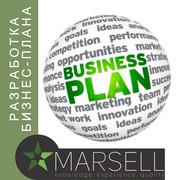 Разработка бизнес-плана любой сложности для разных целей